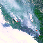Living with Wildfires