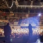 Green Flash Concert: Wild Child