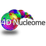 2018 4DN-ASCB Satellite Meeting: Bridging the 4D Genome with Cell Biology
