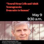 Southern California Stem Cell Seminar Series, Present: Arturo Alvarez-Buylla, PhD, UC San Francisco