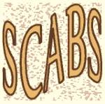 SCABS Quarterly Meeting with Presentations—San Diego Cutaneous Biologists