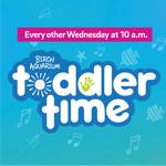 Toddler Time: Hullabaloo at Birch Aquarium