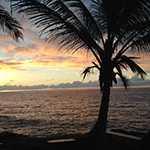 Big Island Yoga and Adventure Retreat