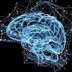 The Neuroscience of Mindfulness-Based Meditation: An Integration of Science and Practice